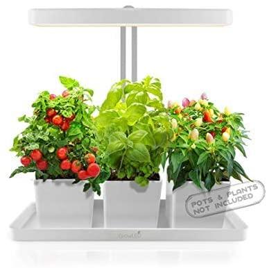GrowLED LED Indoor Garden, Herb Garden, Kitchen Garden, Height Adjustable, Automatic Timer, 24V Low Safe Voltagevalentine day for mom