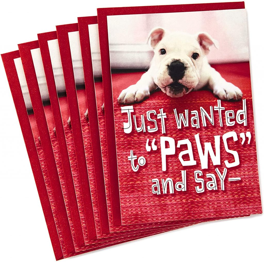 Hallmark Pack of Valentines Day Cards for Kids Puppy Paws (6 Valentines Day Cards with Envelopes)
