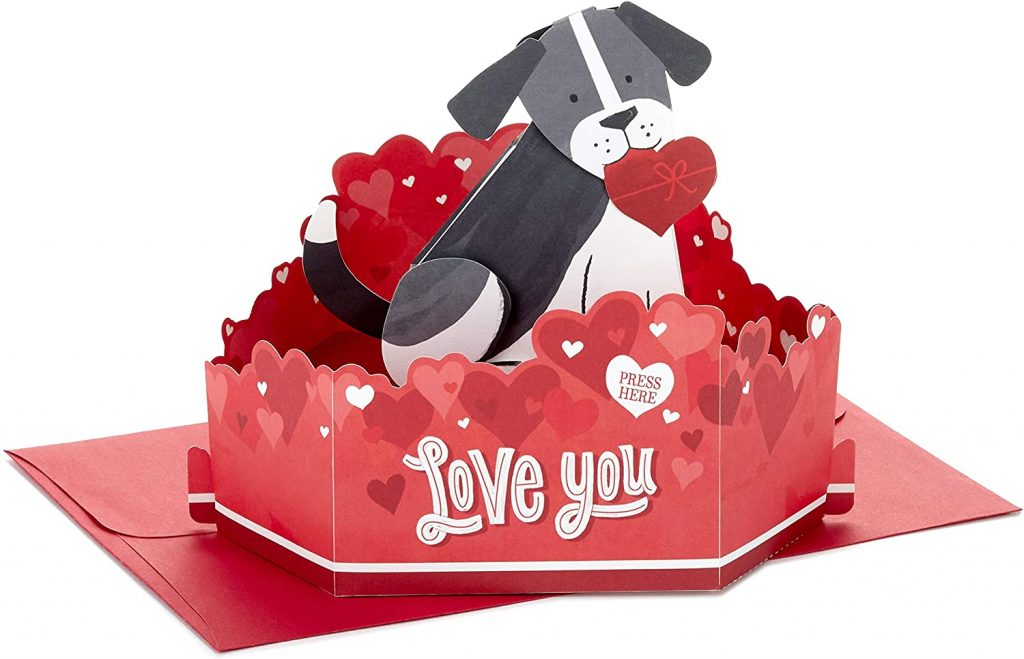 Hallmark Paper Wonder Pop Up Valentines Day Card with Sound and Motion (Dog)
