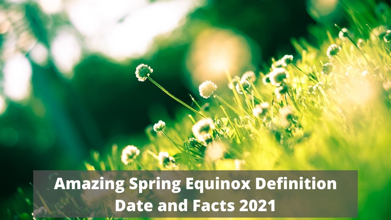 Amazing Spring Equinox Definition Date and Facts 2021