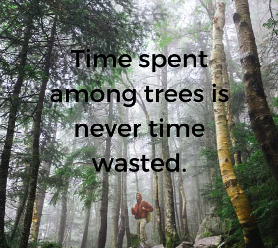 Earth day quotes Time spent among trees