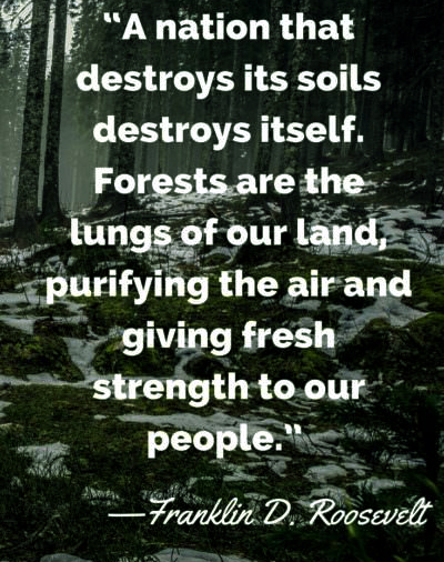 Franklin D Roosevelt earth day quotes 2021