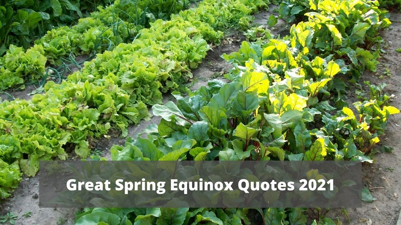Great Spring Equinox Quotes 2021