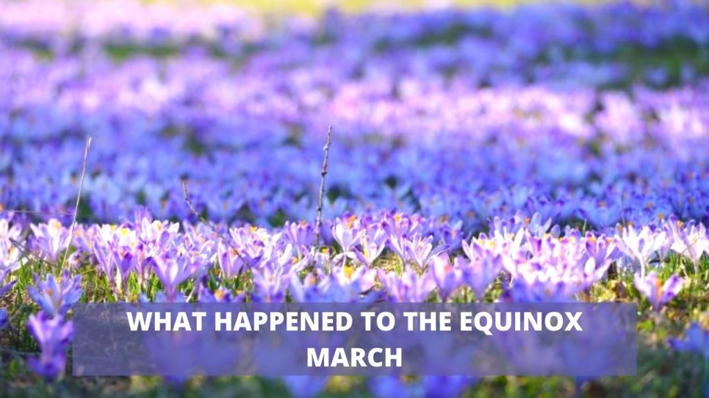 WHAT HAPPENED TO THE QUINOX MARCH