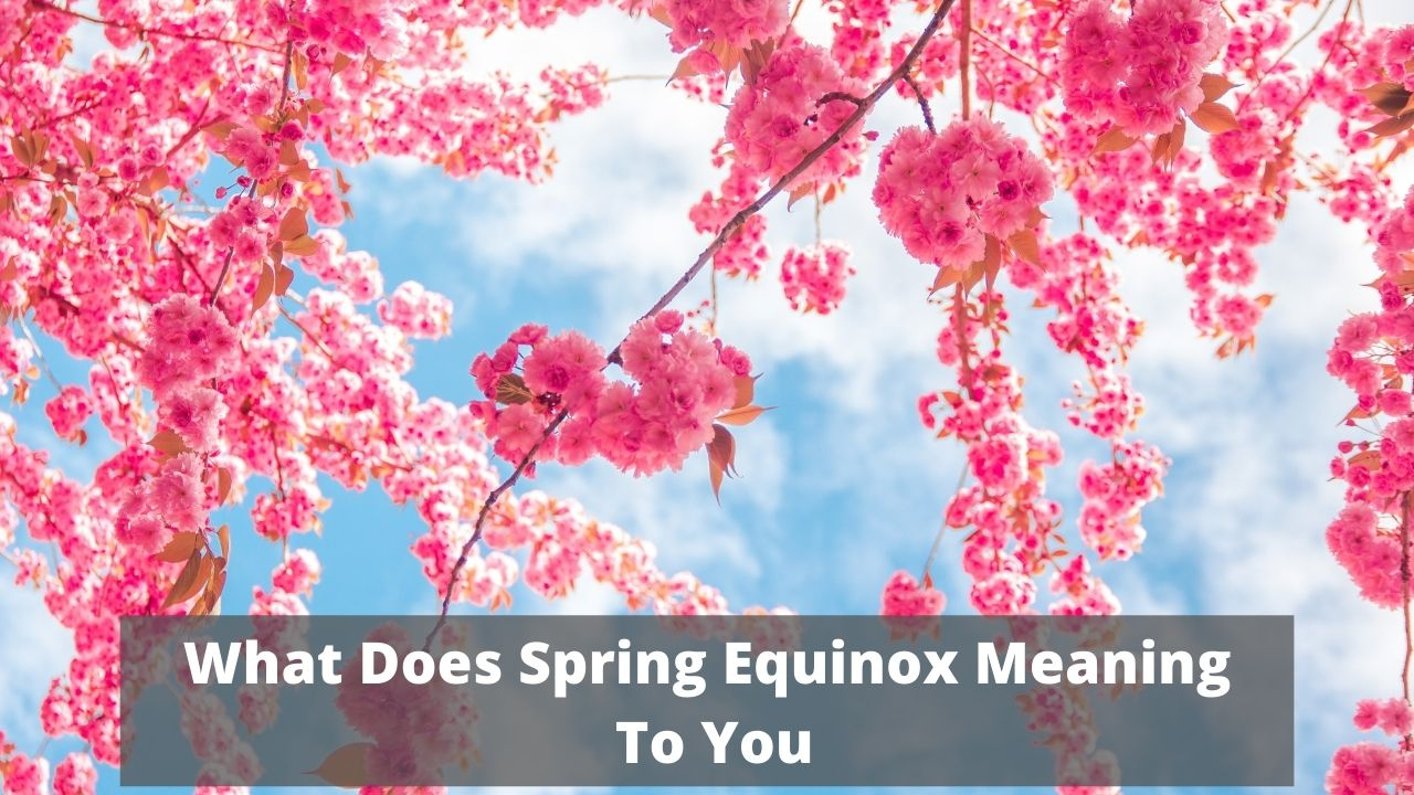 What Does Spring Equinox Meaning To You 2021
