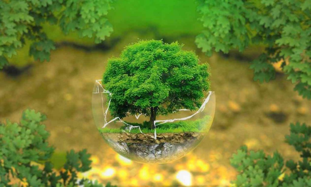 earth day background images 2021