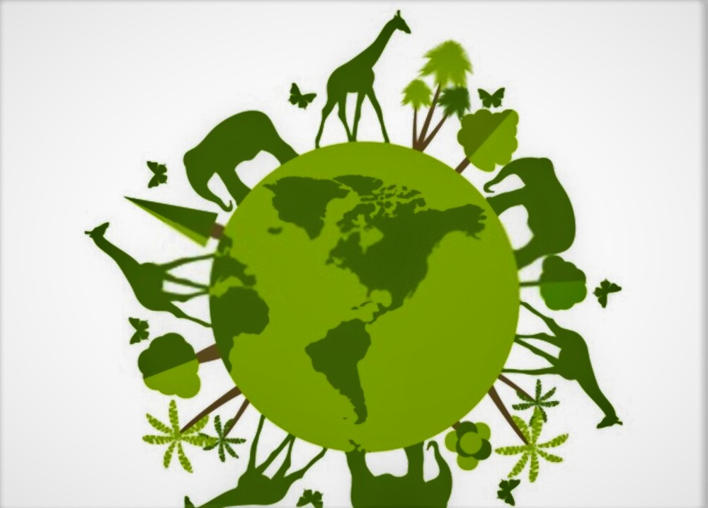 earth day poster of animal wild life 4