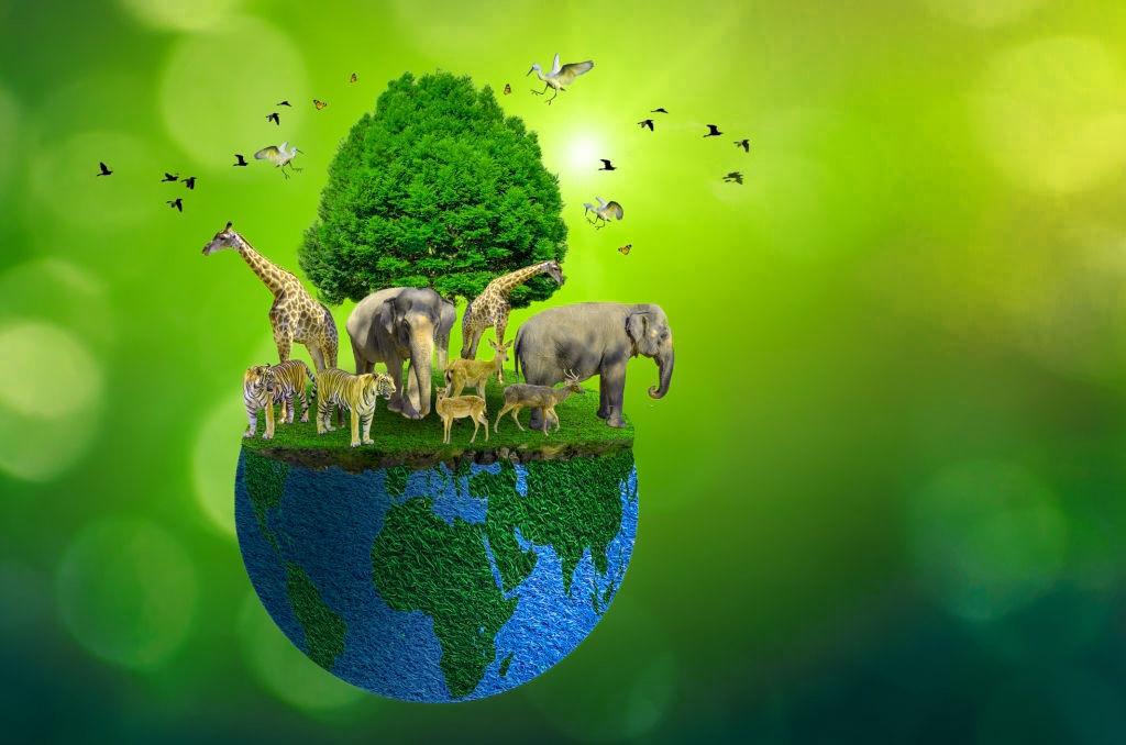 earth day quiz animals 2021