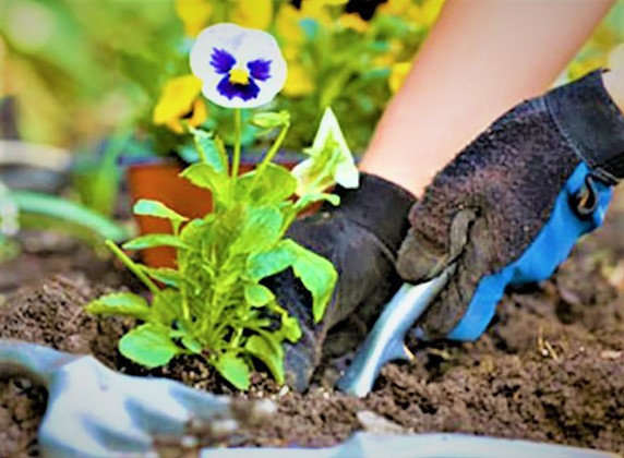mothers day activities of gardening with mom