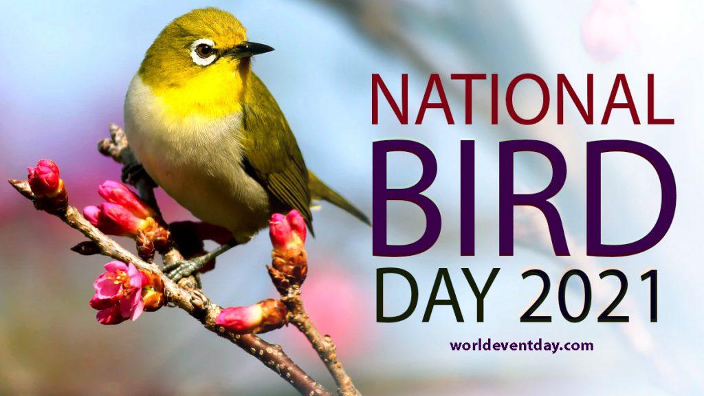 National Bird Day 2021