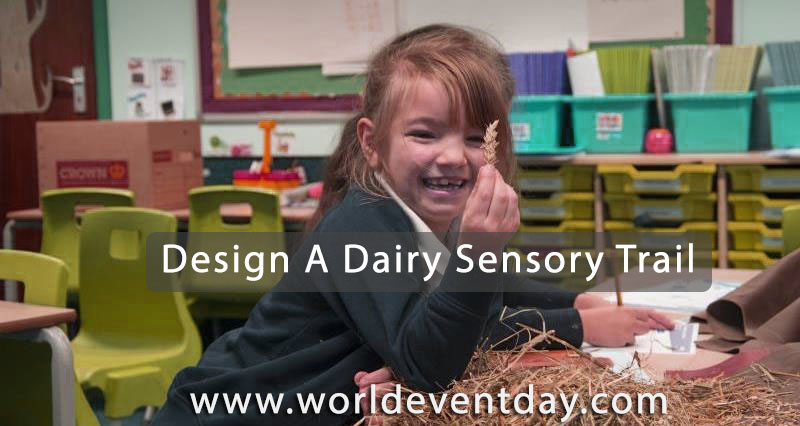 Design a dairy sensory trail on milk day activities
