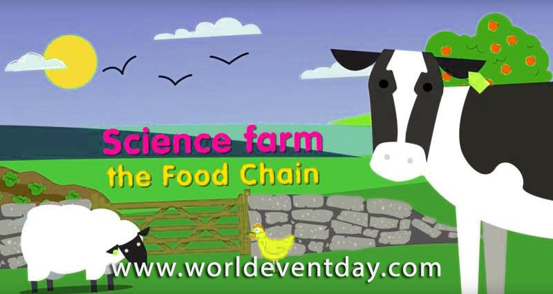 Make a dairy food chain on mild day
