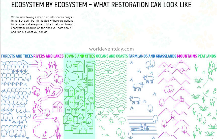 What Restoration Can Look Like