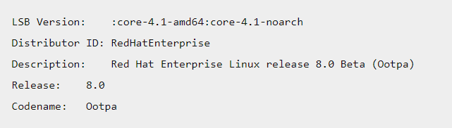 yum command of red hat linux version 2