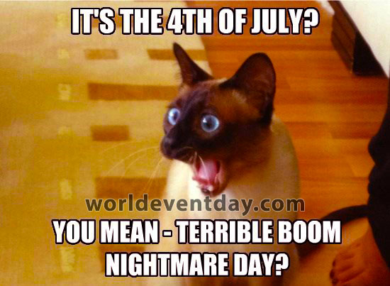 Independence day meme